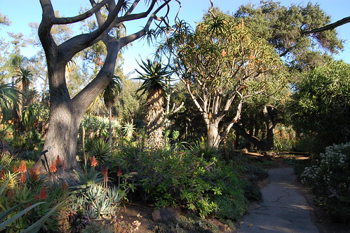 Desert Garden.