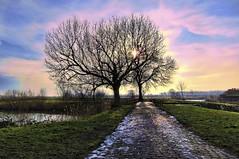 behind the water gate (Wim Koopman) Tags: trees light sky holland netherlands dutch grass canon river photography photo path stones stock nederland powershot cobbles stockphoto s90 stockphotography s100 gorinchem gorkum wpk s95