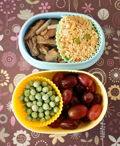 Toddler Bento #80: January 5, 2010