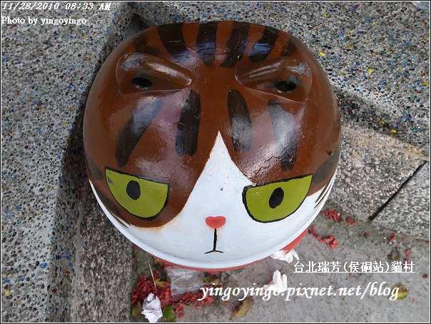 台北瑞芳(侯硐站)貓村20101128_R0016238