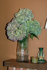 fireplace mantel-summer decorating (kizilod2) Tags: summer green fireplace aqua turquoise verdigris decorating hydrangea mantle mantel