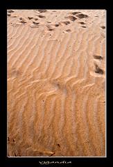 PASEANDO POR LA PLAYA (vjgandia (Siempre, se sincero, gracias)) Tags: port faro mar agua barco playa arena amanecer vistas puesta venecia pequea sal rocas velero afb curiosidad urbanizacion alboraya profundidad poblacion saplaya escollo vjgandia