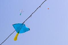 Wish for a soar again [ Sakhari Bazar, Dhaka, Bangladesh] (Sopnochora) Tags: kites ttl bp bangladesh kitesfestival sakharibazar