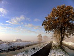 Copper  & Snow (Ger Bosma) Tags: autumn winter sun mist snow colour fall ice beauty sunshine fog rural snowflakes countryside frost scenic surreal hues mystical blueskies groningen quite firstsnow gettyimages winterwonderland winterscape wisps dazzling winterlandscape pristine enchanting winterlandschap clearblue foglifting shroudedinfog dscn2827a
