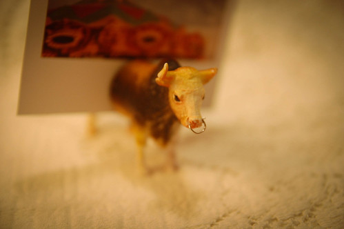 Plastic Animal Photo Holders