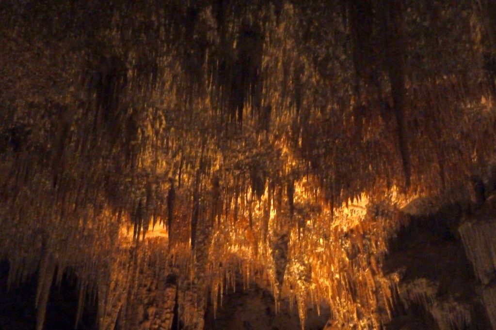 Mammoth Cave 16