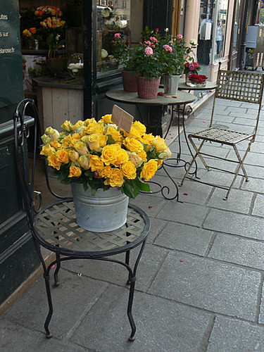 fleurs du marais.jpg