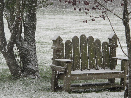 Snow Falling on Bench