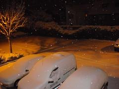 The snow settled!