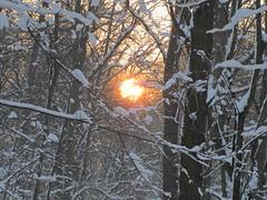 Sonnenaufgang ber Leipzig im Winter (micha81sch) Tags: city sun rot germany deutschland fantastic europa europe himmel wolken leipzig gelb sachsen sonne sonnenaufgang sunraise uniriese schn wahnsinn romantisch wundervoll winterimpressionenen