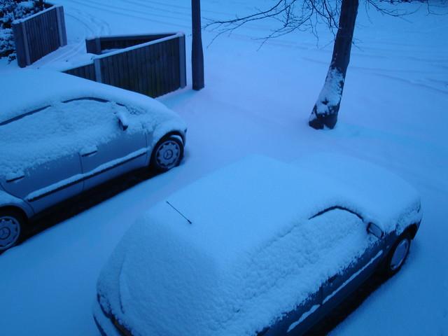 December snowfall (5)