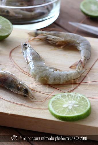 Shrimp / Udang