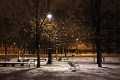 Ce soir aux Tuileries (Calinore) Tags: park street city trees winter snow paris france cold night garden hiver jardin arbres neige rue nuit parc froid ville hccity lacollection selectionneespargetty