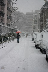 IMG_6452 (pellegrini_paris20) Tags: canon eos 1000d neige snow schnee paris ville souslaneige flocondeneige flocons snowflake schneeflocke blanc white weiss esschneit itsnows ilneige flocon flocke flocken flake schneit floconsdeneige