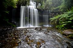Russell Falls (mrfuller) Tags: travel water waterfall nationalpark soft australia backpacking tasmania cascade russellfalls trypod mtfield dsc2811
