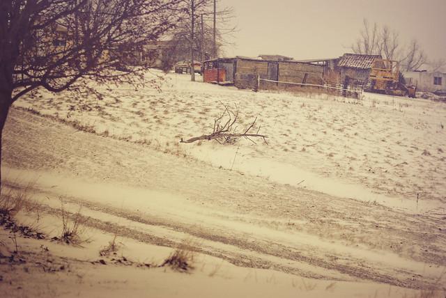 snow21