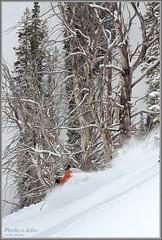 Powderwhore (Photo-John) Tags: winter mountains cold sports utah nikon wasatch solitude action outdoor sigma os powder saltlakecity pow 70200 powderhorn hsm coldsmoke d7000 powderwhore