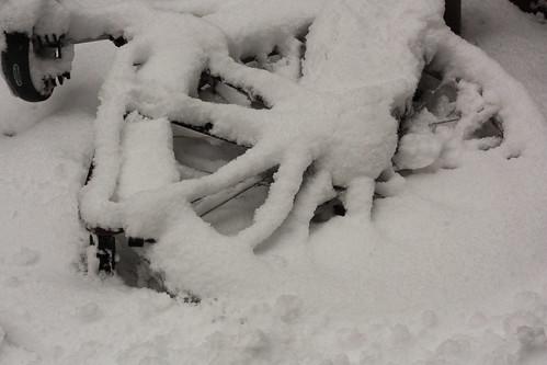 Bicicleta na neve em Haia