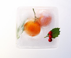 clementine ice cube