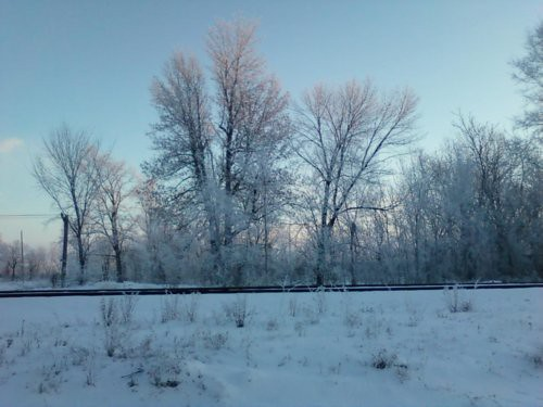 hoarfrost12-19-10rs