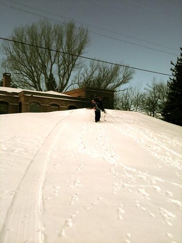 Montana Snow