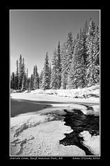 Altrude Creek, Banff National Park (kgogrady) Tags: winter blackandwhite bw snow canada mountains ice river rockies blackwhite nikon alberta bow western banff rockymountains bowriver banffnationalpark d700 altrudecreek