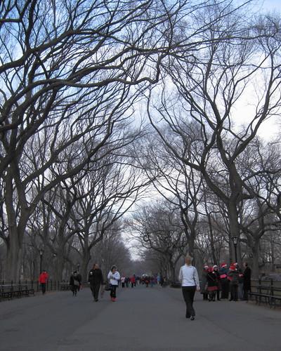 101219_Central_Park_in_December_040
