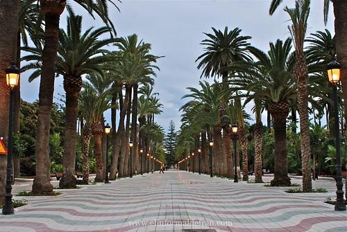 Parque Hernández