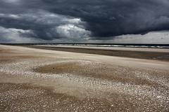 Au loin, l'orage (Ludovic Cadet Photo) Tags: cloud storm beach landscape sand day sable ciel sk nuages paysage plage strom merdunord coquillages tempte bouchot oyeplage