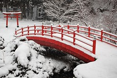 Christmas Day in Hachimantai, Iwate (jasohill) Tags: christmas bridge winter red white snow nature japan temple japanese shrine culture iwate backgrounds  merry     tohoku toori matsuo 2010 hachimantai   jasohill  superaplus aplusphoto gettyimagesjapanq2