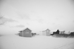 Dream away (Anna Lindqvist) Tags: winter art nature blackwhite sweden bstad