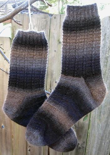 llamallamaduck pair1