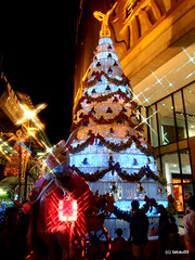 Christmas Tree, Thailand