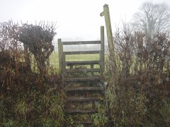 A styal or a ladder - or both?