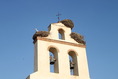 Church Bells and Stork Nests