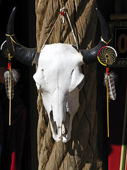 Bison Skull (MarkusR.) Tags: vacation usa newmexico skull urlaub pueblo unesco taos bison nativeamericans dreamcatcher taospueblo weltkulturerbe traumfänger schädel nationalhistoriclandmark markusrieder mrieder usa2010 20101004usa042 bisonschädel