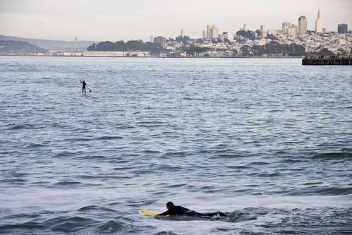 46 Surfer
