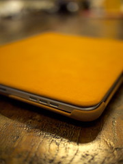 SGP Pouch for iPad (6)