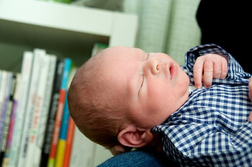 atticus: newborn photos