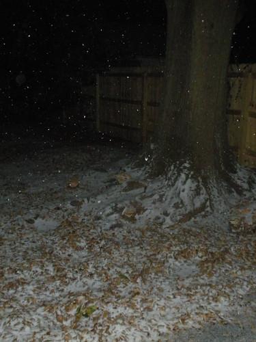 A little snow...