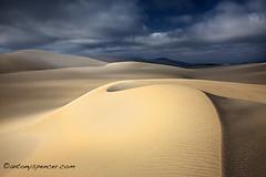 Esperance dunes (antonyspencer) Tags: sunset landscape sand desert dunes south dune australia western spencer antony esperance stromy saariysqualitypictures
