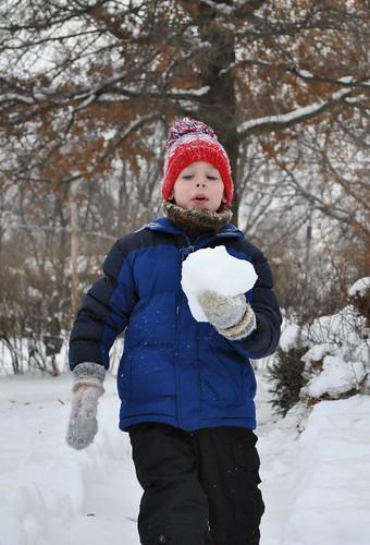 snowfall jan 2011 061_crop