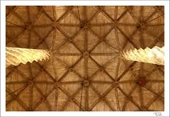 Lonja Valencia (falutx) Tags: roof espaa valencia architecture arquitectura silk column seda hdr lonja techo columna ubicacion