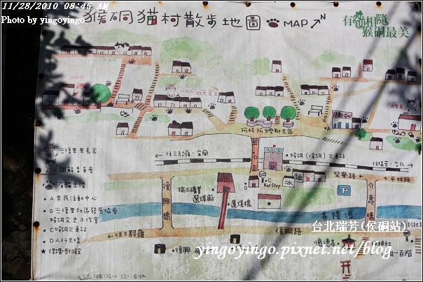 台北瑞芳(侯硐站)貓村20101128_I5604