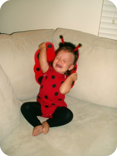 Ladybug Costume with Junebug