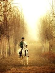 Equitación 200/365