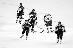 Tough Guys Ice Skate...With Clubs (raisinsawdust - (aka: tennphoto)) Tags: bw ice hockey sticks nikon tennessee skating arena rink score predators nashvillepredators 2011 d90 minnesotawild preds hockeysticks nikond90 nikond90bw afteragoal