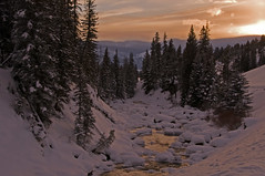 Natures Dance (dbushue) Tags: trees winter sunset snow mountains cold nature water creek landscape reflecting dance scenery colorful dusk pines yellowstonenationalpark frigid ynp snowcovered coth supershot naturesgarden sodabuttecreek theunforgettablepictures absolutelystunningscapes damniwishidtakenthat coth5 photocontesttnc11 winterholidaystnc10 dailynaturetnc11