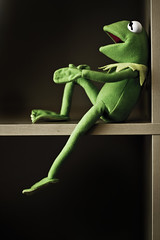 Kermit Just sitting 2 (SeRVe Photography) Tags: show muppets frog shelf muppet kermit sittin
