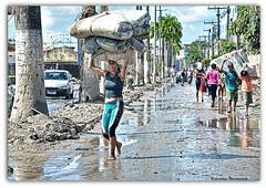 A força da Mulher (Daniel Tavares f o t o g r a f i a) Tags: rio una palmares cheia enchente chuvas desabrigados